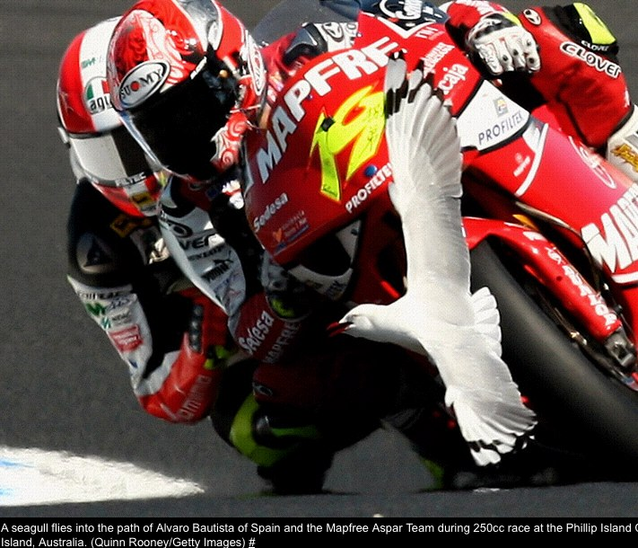 The 2008 Australian motorcycle Grand Prix - The Big Picture - Boston.com.jpg